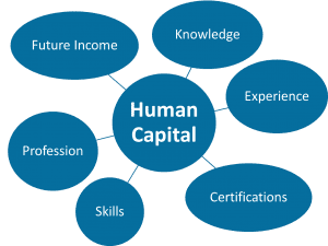 Your FitBUX Score incorporates your largest asset, your Human Capital. Human Capital is the level of your future income and the risk to that income.